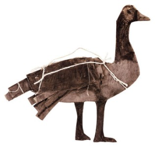 James Castle's goose